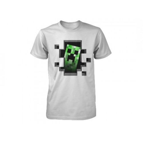 Minecraft Creeper Inside Youth